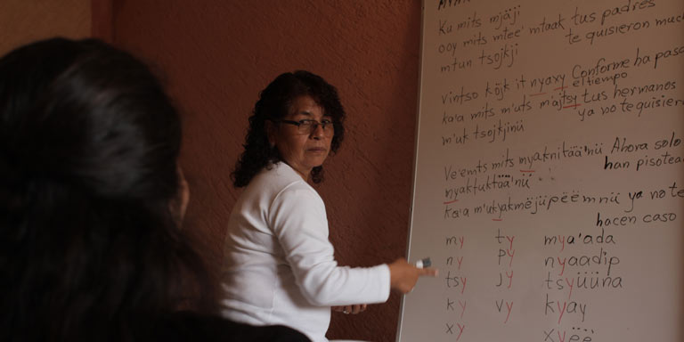 Woman teaching at a whiteboard