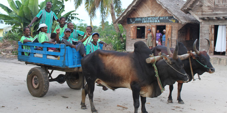 People in an ox cart outside of a shop