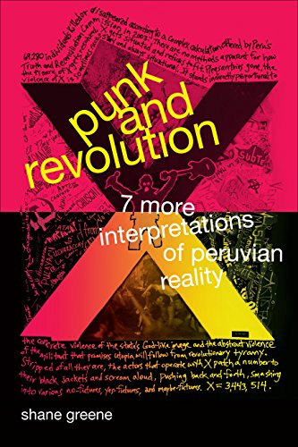 Punk and Revolution book cover